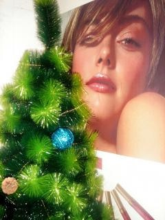 モミのクリスマスツリーを持つ少女