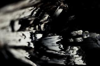 汚れた腐った木材、