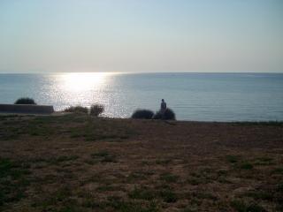 トルコ、トルコ、水からの写真