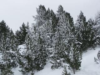 Снег в андорре