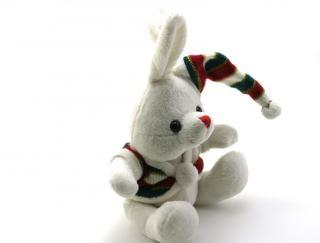 愛らしい一般的にはウサギのぬいぐるみ