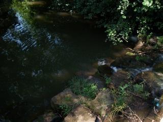 生活障害の川