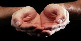 カップの手