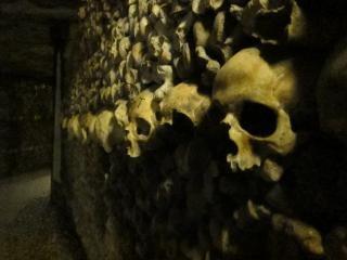 遺跡 - カタコンベ、殺す、頭蓋骨