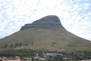 Голова льва кейптаун
