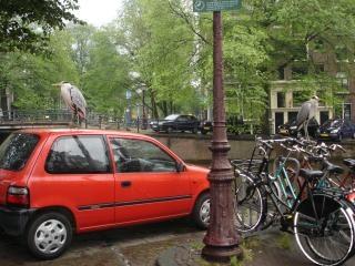鷺の車やバイク