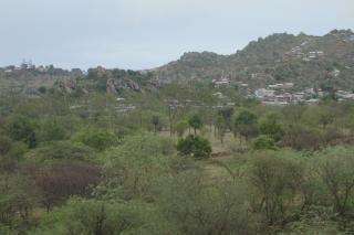 タミルナドゥの自然の眺め