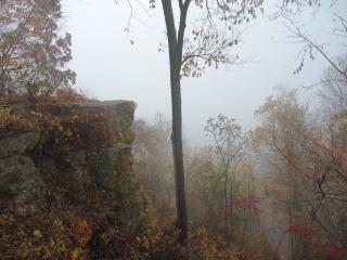 Туман вид с блефом