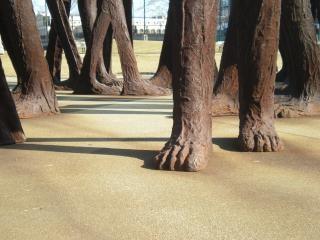 Агоры ног