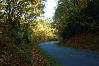 山の中の曲がりくねった道