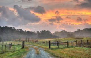 田舎の道路と日の出
