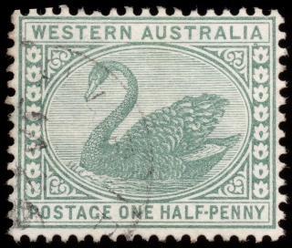 緑の白鳥スタンプ