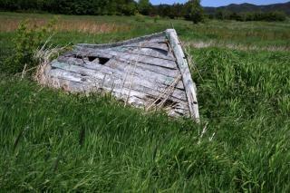 Лодка траве