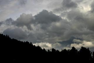 曇り空、雲に対する木