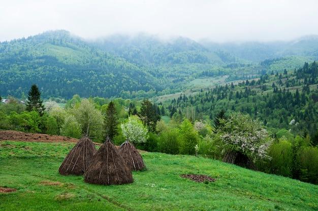 山の風景。カルパティア山脈。