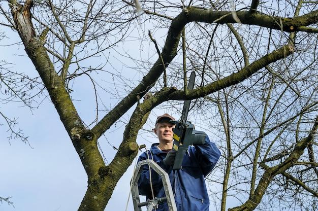 Человек режет ветку увядшего дерева.