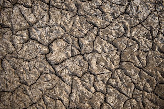 Текстурированная сухая земля соленого озера