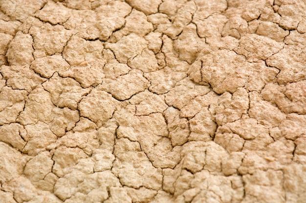 バルデナスレアレス砂漠の乾燥地の詳細