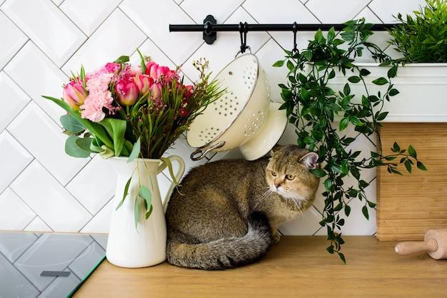 Серый кот шиншиллы породы рядом с букетом цветов в современном кухонном интерьере