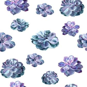 多肉植物とのシームレスなパターン。手描きの水彩イラスト。
