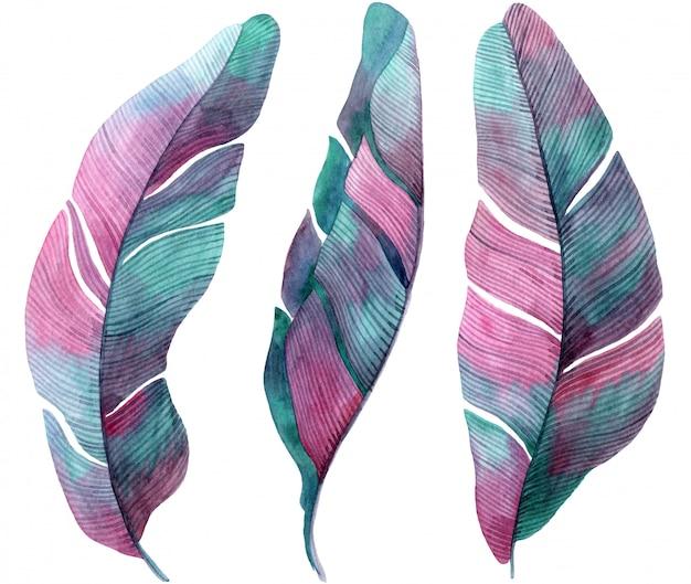 パームピンクとライラックの葉の水彩イラスト。