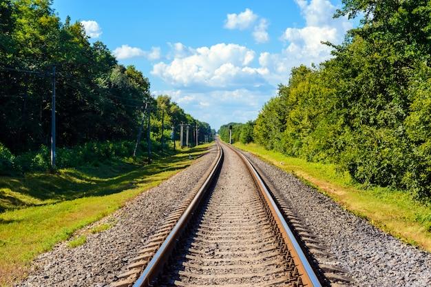 Железная дорога идет до горизонта, по обе стороны от зеленого густого леса.