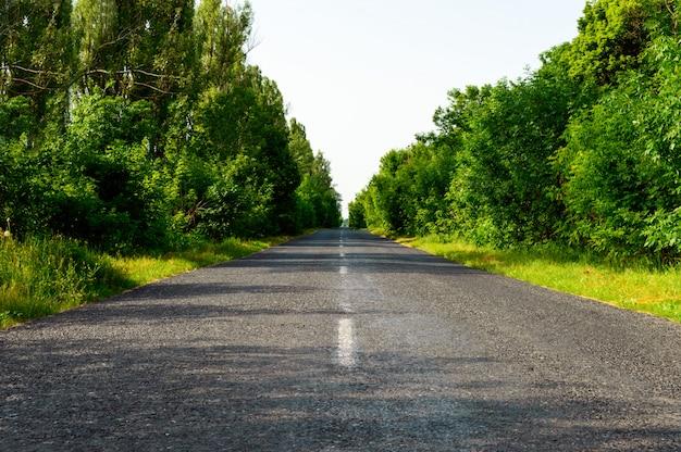 Дорога, сделанная из асфальта, уходит.