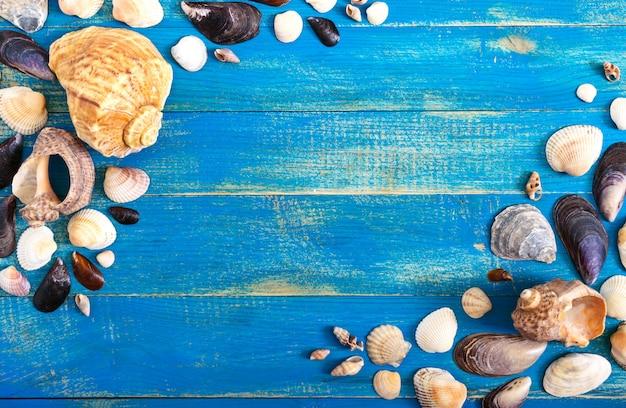 熱帯の海の背景。青いボード上の異なるシェル、トップビュー。碑文用の空き容量。夏のテーマ。