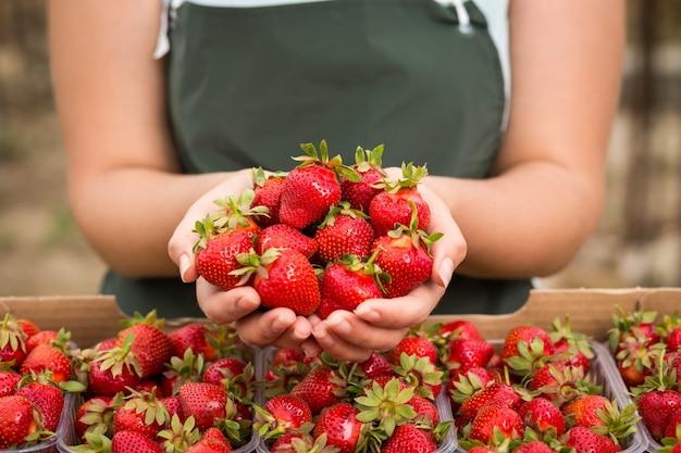 Инженер по выращиванию клубники, работающий в теплице с урожаем, женщина с ягодами
