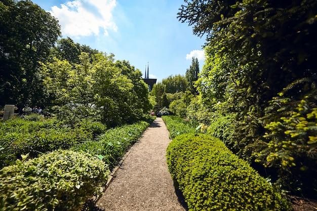 Ботанический сад университета во вроцлаве, польша. сад был построен на соборном острове (острув тумский)