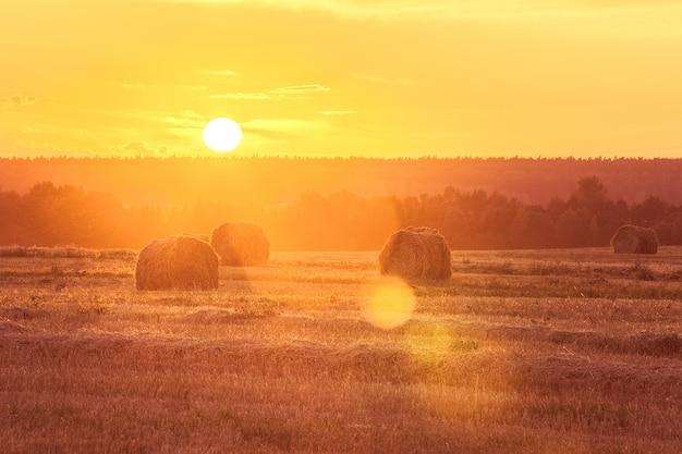 干し草の俵と日没のフィールド風景