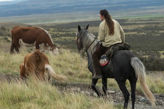 馬、トレス・デル・ペイン国立公園、パタゴニア、チリを乗っている女性