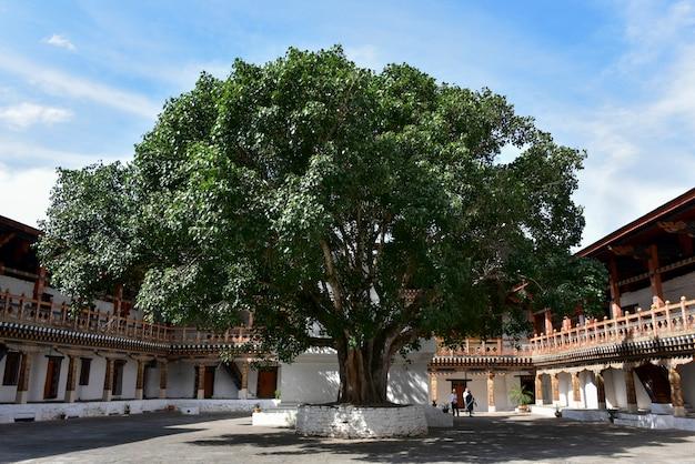 プナカ・ゾン、プナカ、プナカ渓谷、プナカ地区、ブータンの眺め