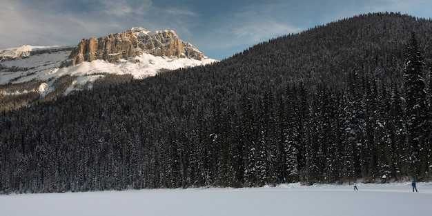 雪で覆われた谷、エメラルド湖、フィールド、ブリティッシュコロンビア州、カナダのスキーヤー