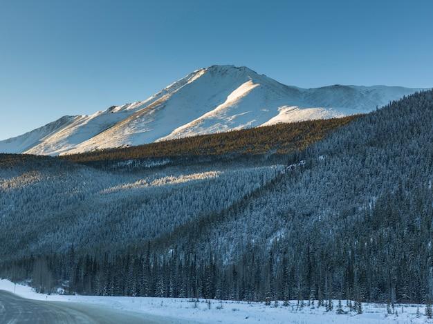 背景、アラスカ州高速道路、北ロッキー地域の雪解け山岳地帯の木々の眺め