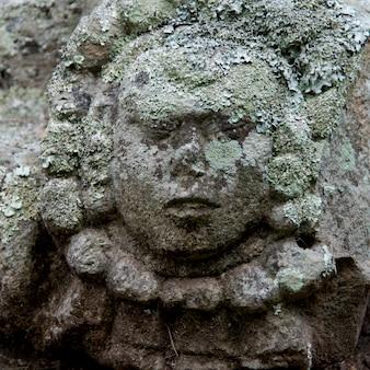 Деталь скульптуры, копан, копанские руины, копанское отделение, гондурас