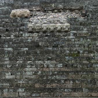 Скульптуры, вырезанные на стене в археологическом месте, копан, копан руинас, копанское отделение, гондур