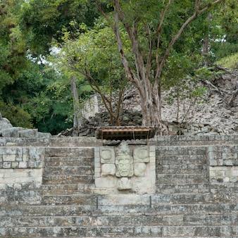 Скульптура, высеченная на стене в археологическом месте, копан, копан руинас, копанское отделение, гондура