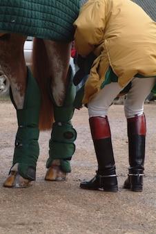 馬の足を閉じます。