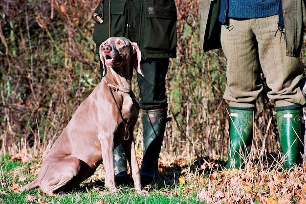 その所有者と犬。