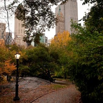 Осень в центральном парке в манхэттене, нью-йорк, сша