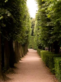パリの公園にある歩道