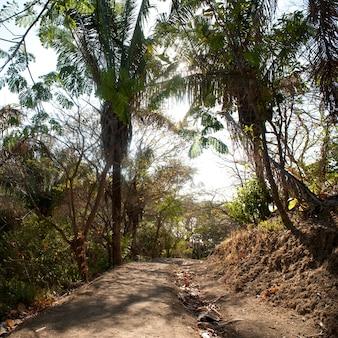 コスタリカの景観を通る道