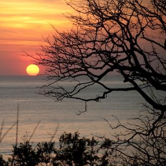 コスタリカの沿岸水域の日没