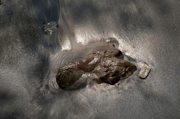 コスタリカの泥の多いビーチの岩