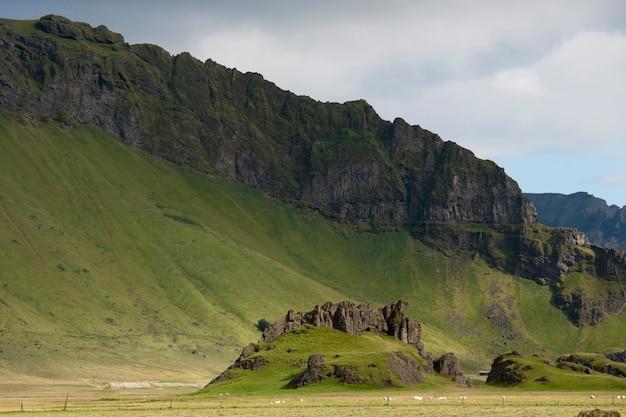 急斜面に生育する緑の牧草地のある山