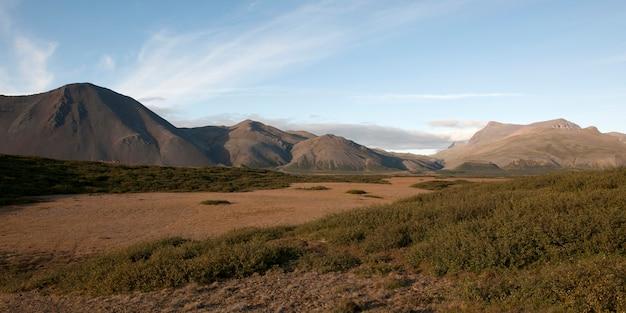 風景、乾燥した平野、茂み、遠い山々