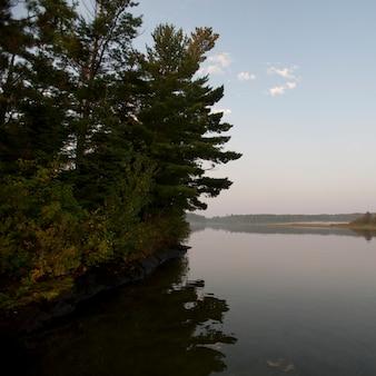 オンタリオ州レイク・オブ・ザ・ウッズの海岸線