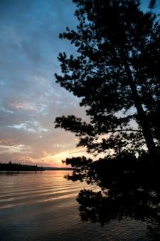 オンタリオ州レイク・オブ・ザ・ウッズの常緑樹の後ろにある太陽