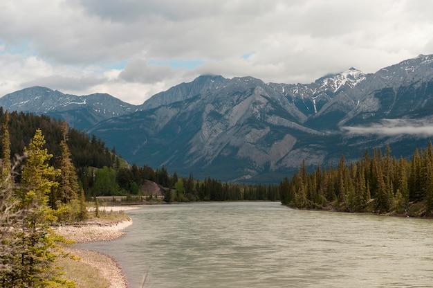 アサバスカ川、ジャスパー国立公園、アルバータ、カナダ